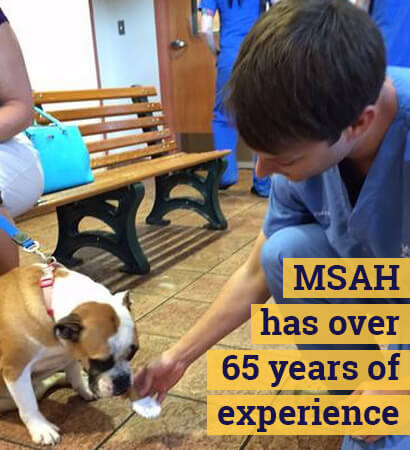 MSAH has over 65 years of experience