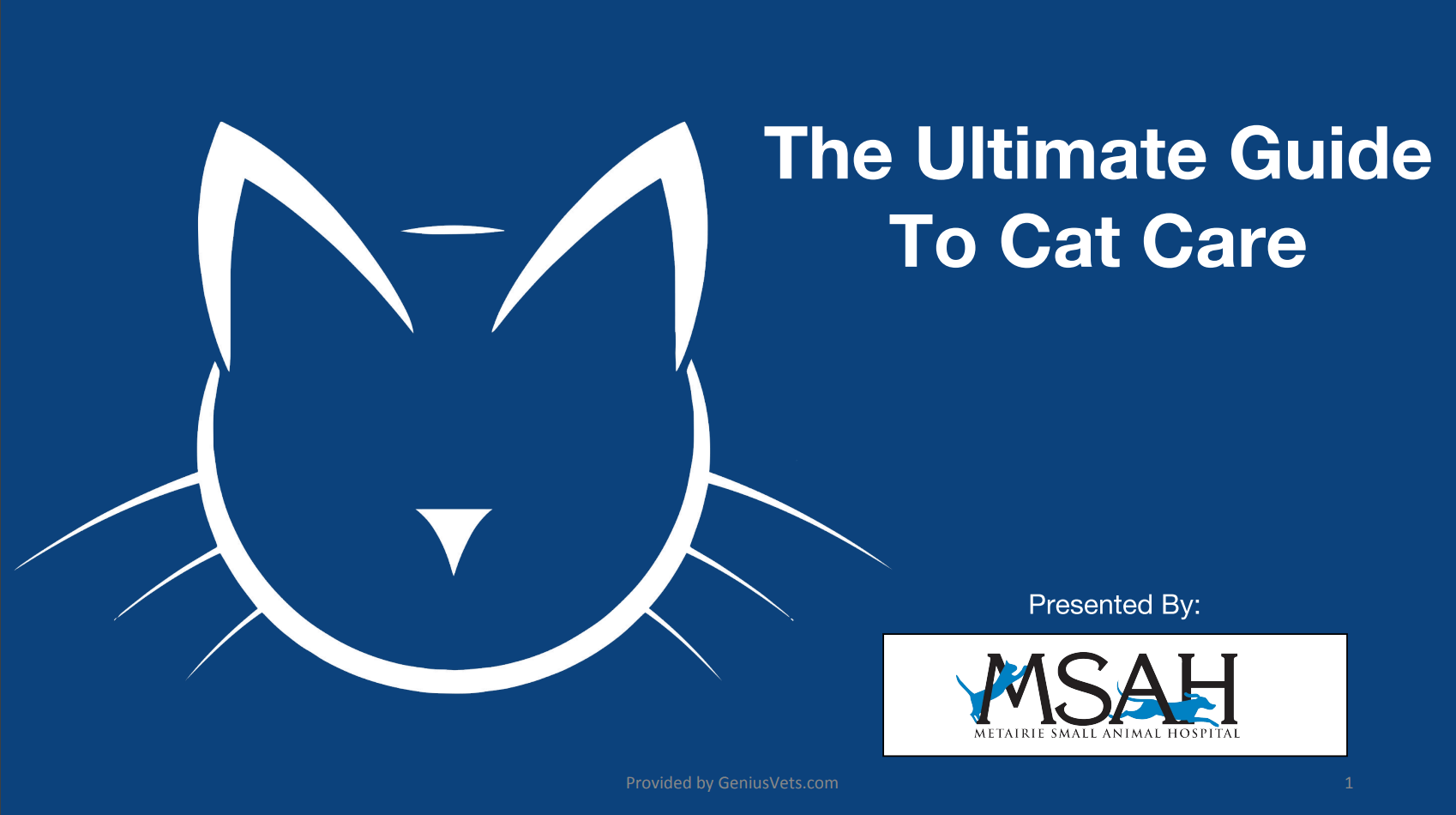 Guide to cat care cover image msah