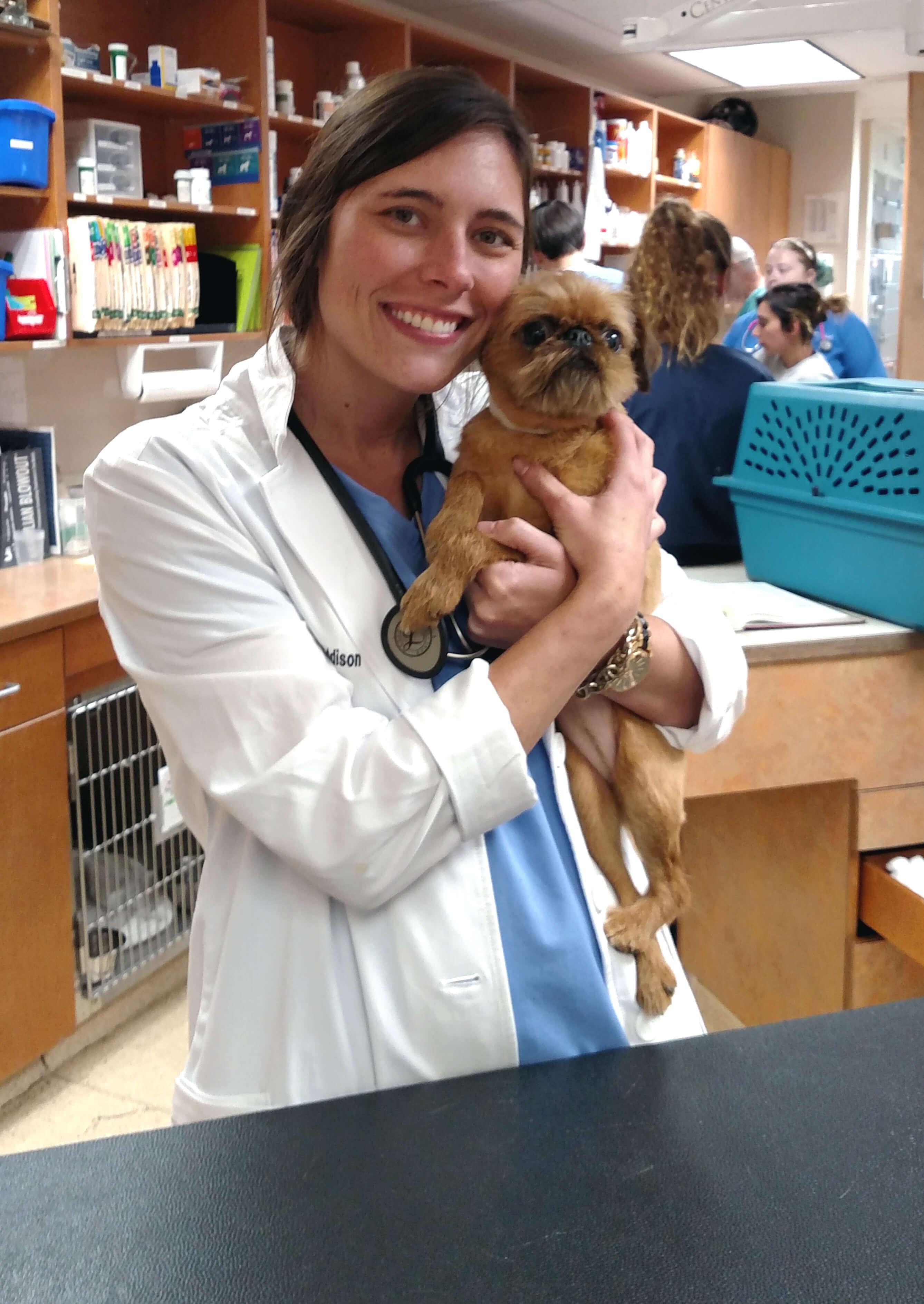 Dr. Meredith Addison