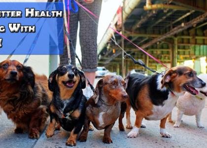 Unleash better health by walking with your dogs!