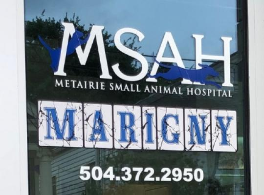 MSAH Marigny Clinic